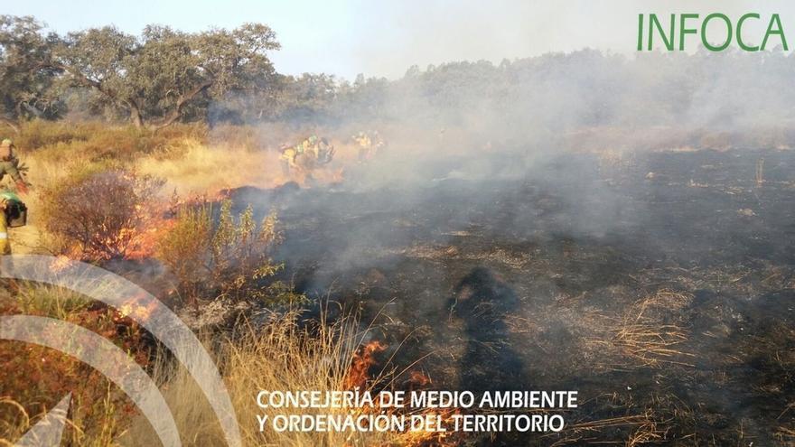 El incendio forestal en El Castillo de Las Guardas es el de mayor envergadura ocurrido en Andalucía este 2016