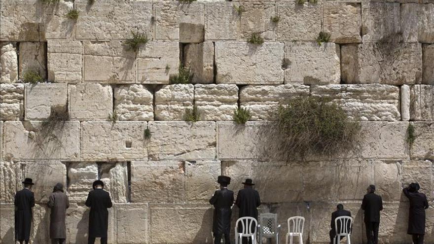 El Muro de las Lamentaciones, un lugar sagrado también para los vencejos