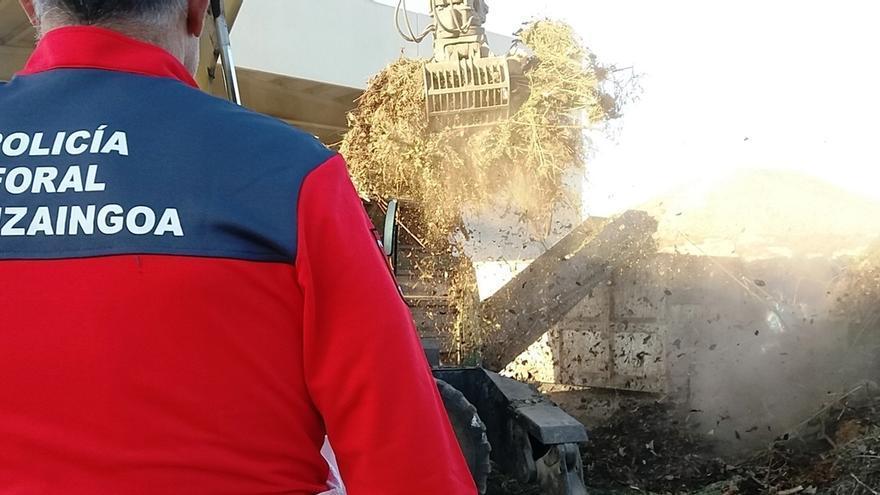Destruidos en el vertedero de Tudela 60 kg de marihuana recogida en la Ribera