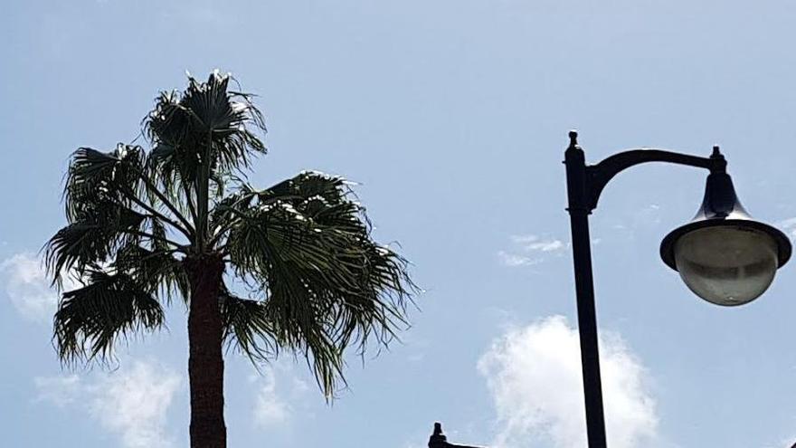 Temperaturas en ligero ascenso este miércoles en La Palma