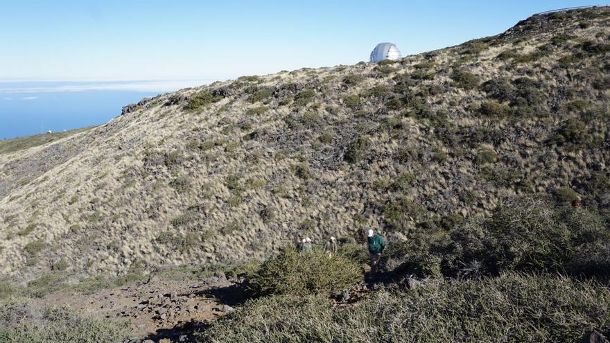 Trabajos de deslinde en las cumbres de Puntagorda.