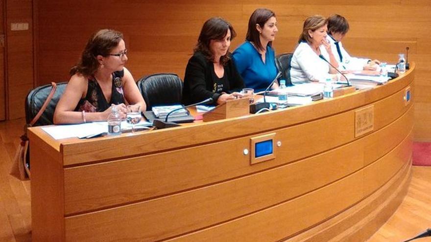 La presidenta de la Asociación de las Víctimas del Metro de Valencia, Beatriz Garrote en su comparecencia en las Corts