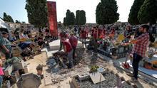 Trabajadores de Arqueoantro inician una exhumación en una fosa del cementerio de Paterna (València).