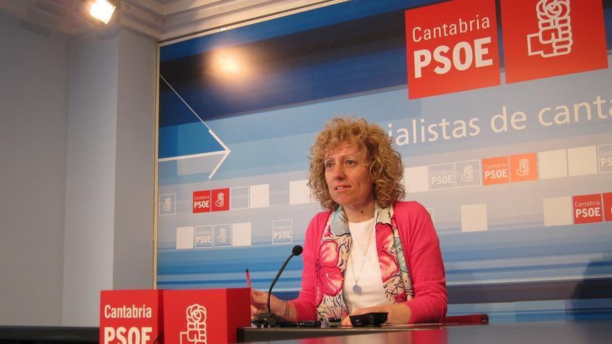 """Díaz Tezanos asegura que el Gobierno de Diego (PP) es un """"peligro para el progreso"""" de Cantabria"""