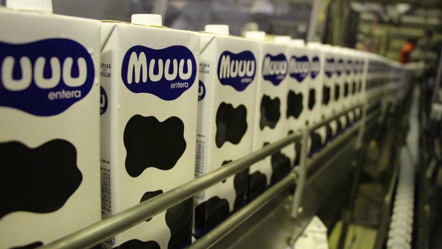 Envasado de Muuu en la factoría Tegestacín, en Outeiro de Rei (Lugo)