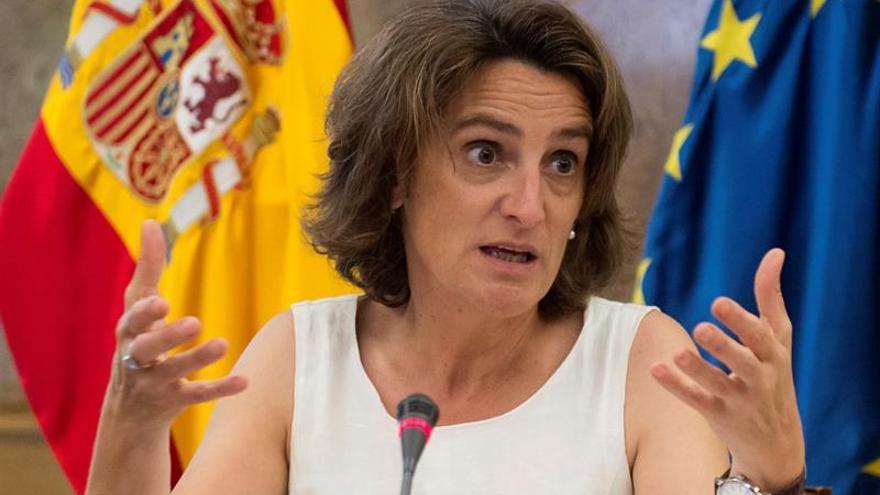 Ribera: El Gobierno activará una campaña masiva para facilitar el acceso al bono social