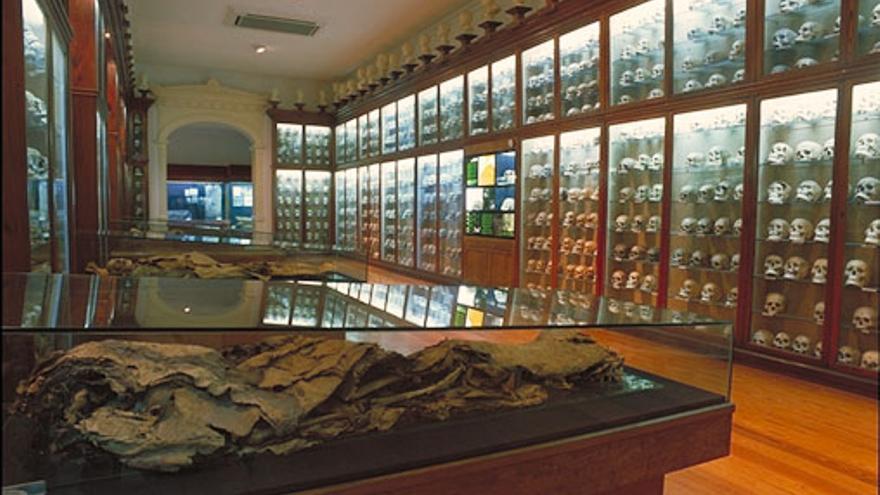 Sala de los cráneos, una de las más impactantes del Museo Canario. VIAJAR AHORA