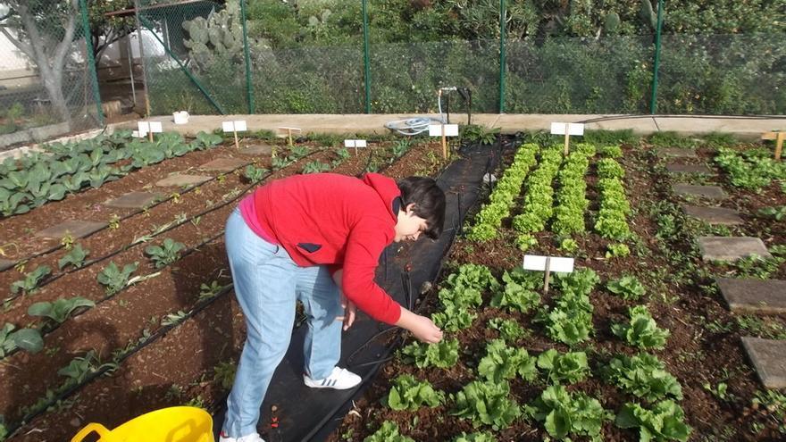 Una alumna realiza tareas agrícolas en el huerto de El Dorador.