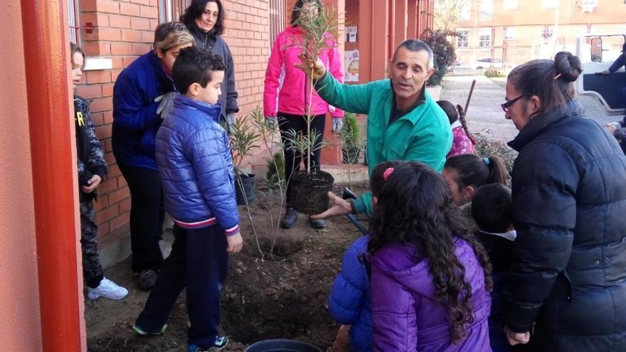 Los escolares participan en una jornada de plantación de árboles en el centro / Colegio Antonio Machado