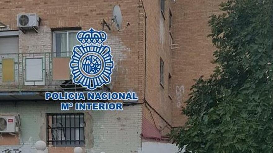 Más de 200 agentes en una operación contra el tráfico de marihuana en Granada