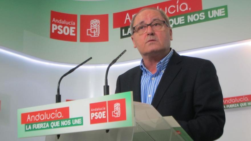 """Cornejo, sobre Madeja: """"El PSOE-A ni se ha beneficiado ni ha recibido un sólo euro de todas esta trama de sinvergüenzas"""""""