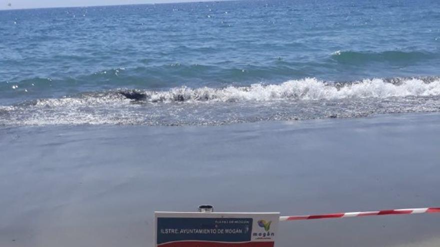 Cierre de la playa de Patalavaca.