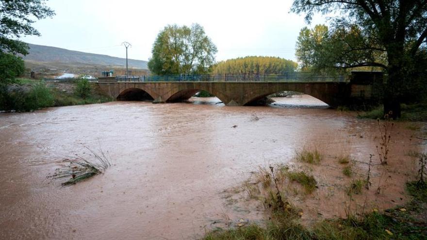 Casi la mitad de los tramos de río ibéricos no goza de buen estado ecológico