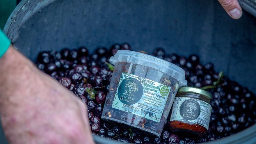 El producto se elabora en base a la aceituna manzanilla en su máxima maduración.
