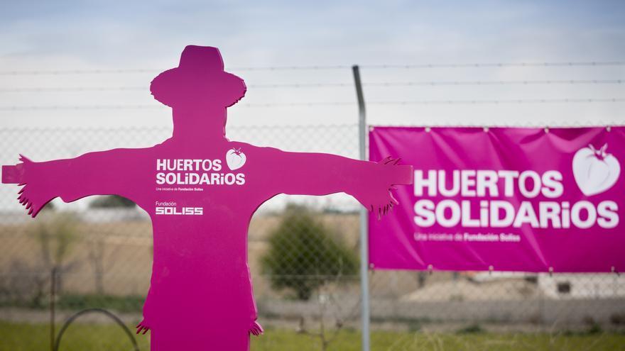 Huertos solidarios