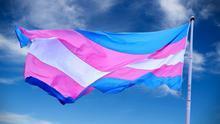 Imagen de archivo de la bandera trans.