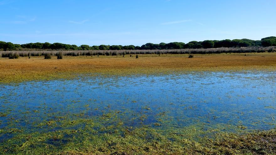 Laguna Zahillo. Era laguna temporal de larga duración o estacional. Laguna seca desde 2010, apenas hay agua y se seca en seguida.