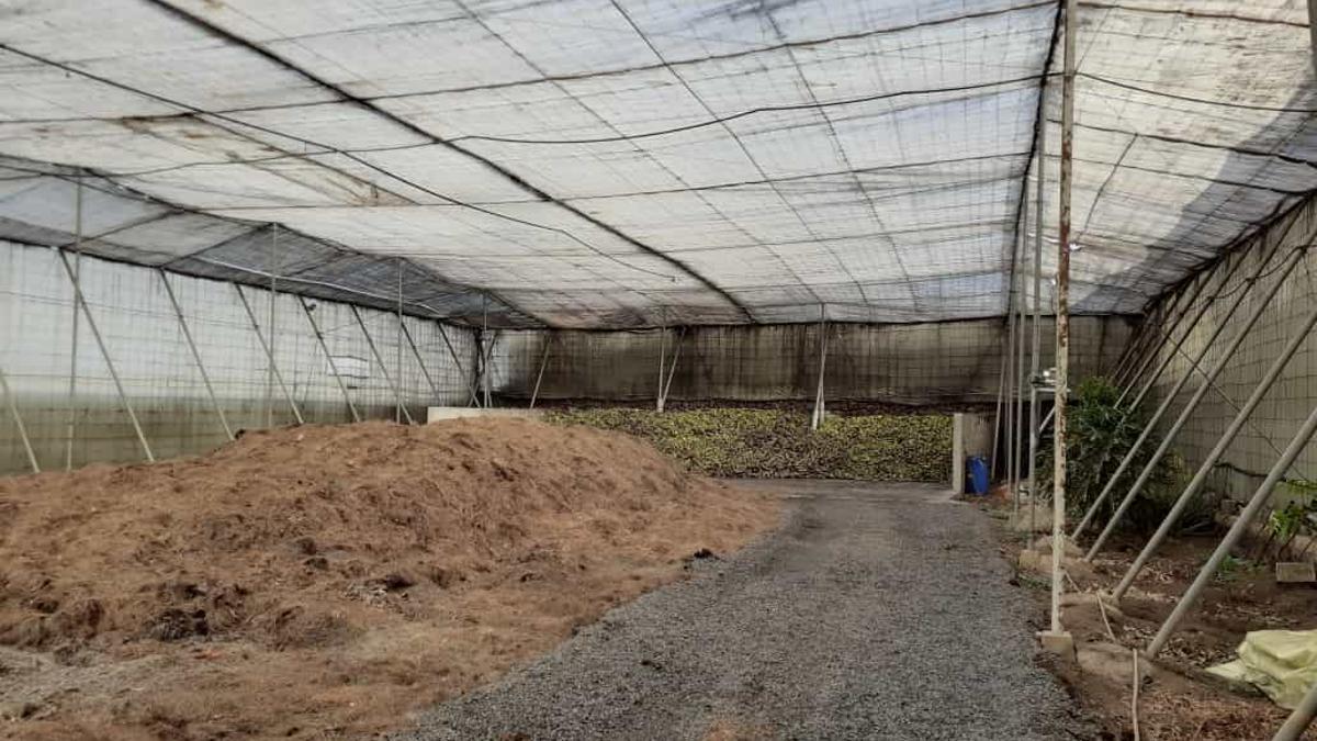 Planta de compost ecológico de Triana. (Imagen cedida por la explotación)