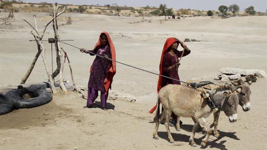 """Asia sufrirá efectos """"devastadores"""" con el cambio climático, según estudio"""