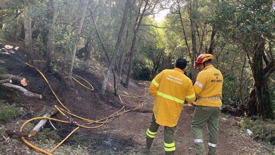 Estabilizado un incendio en La Gomera tras quemar 1,5 hectáreas del Parque Nacional de Garajonay