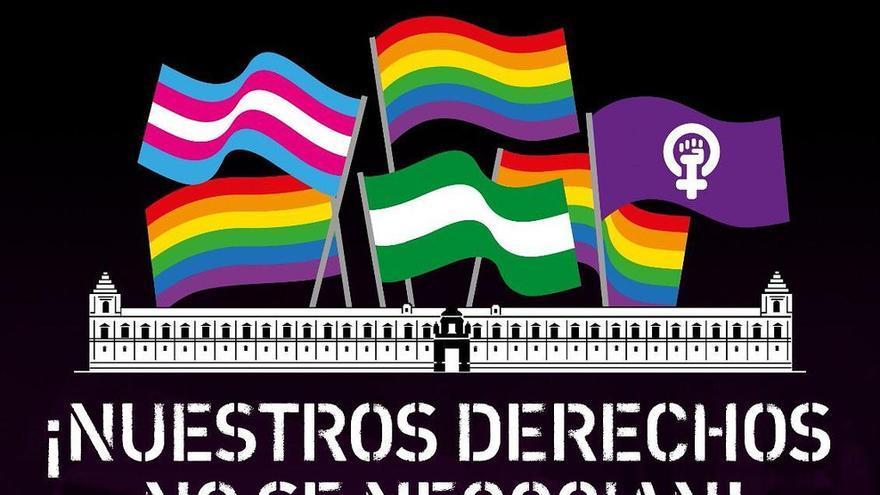 """El movimiento LGTBI andaluz se unen a las organizaciones feministas el 15 de enero: """"¡Ni un paso atrás en diversidad!"""""""