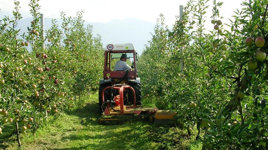 Gobierno vasco financia con 330.000 euros las ayudas complementarias a la instalación de jóvenes agricultores