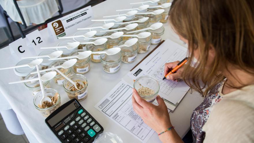 La cata final se celebra este jueves en el Museo del Gofio de Garafía. Existen cuatro categorías del concurso: Trigo, millo, mezcla trigo y millo y otras mezclas.