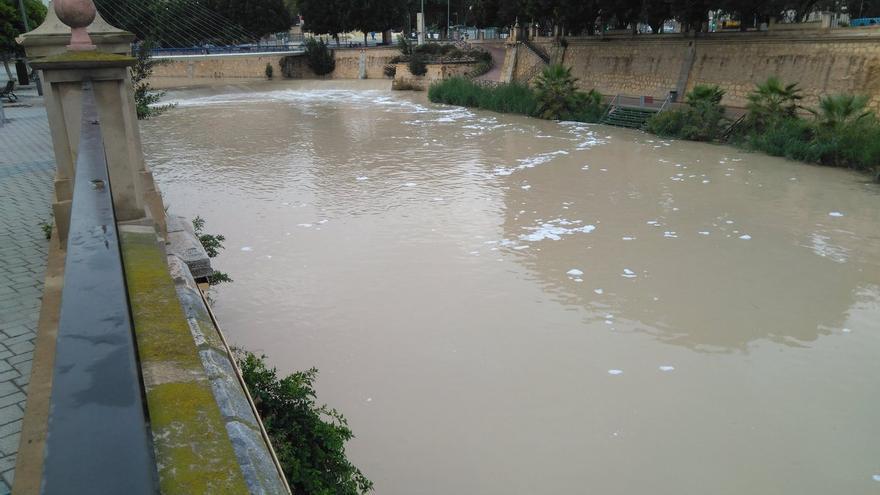 Espuma blanca en el rio segura