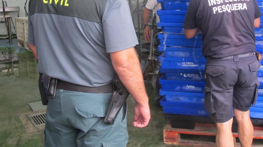 Intervienen en un almacén de Isla Cristina (Huelva) más de 1.700 kilos de pescado sin etiquetar