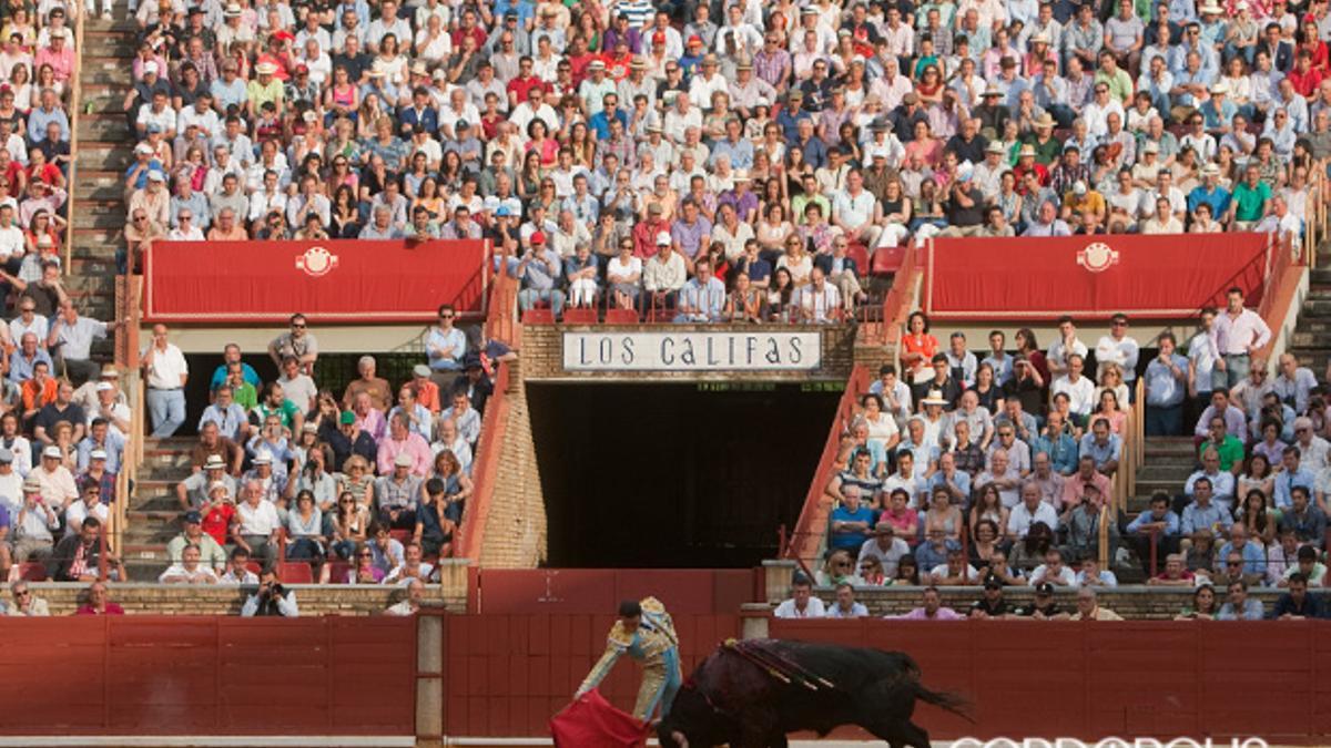 Corrida de toros en la plaza de los Califas