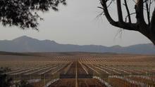 El cambio climático amenaza con desplazar a miles de españoles por convertir sus tierras en desierto