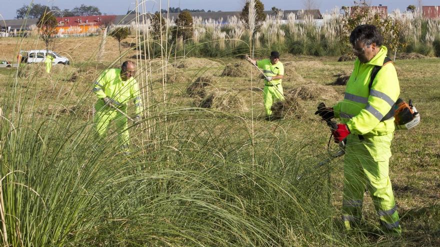 El Ayuntamiento limpia el entorno de la antigua Marisma de Cacho