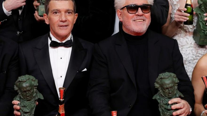 """""""Dolor y gloria"""" de Almodóvar se impone en los 34 Premios Goya"""