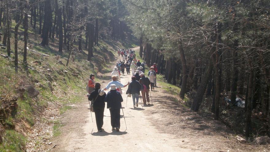 Bilbao pone en marcha el programa 'Red de caminantes' para fomentar la vida saludable