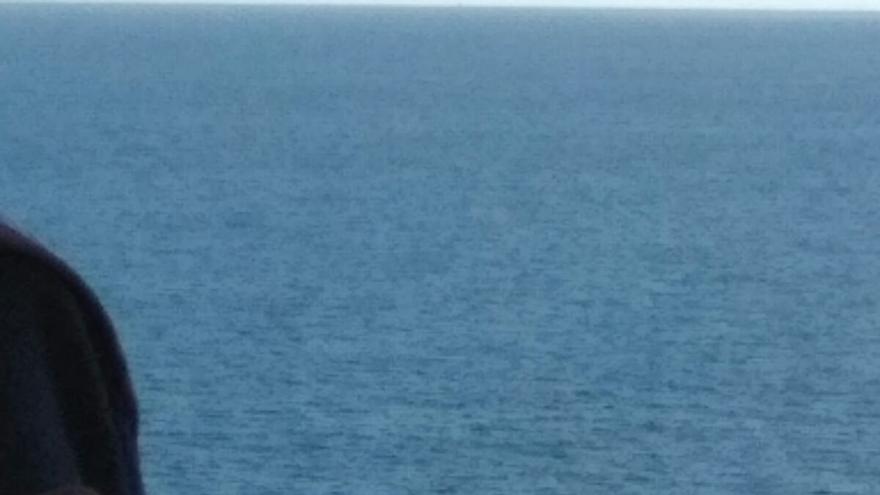En la imagen, la ballena muerta en la costa de Los Sauces.
