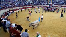 La suelta del toro embolao de Los Barrios (Cádiz) termina sin heridos