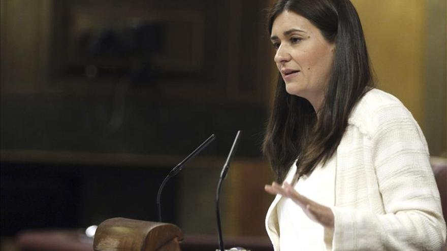 La diputada y secretaria de Igualdad del PSOE, Carmen Montón. EFE