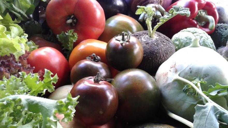 En la imagen, verduras en el Agromercado de Breña Alta.