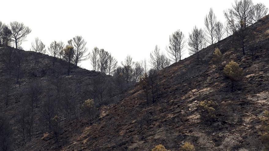 Los medios aéreos vuelven al incendio de Artana por tercer día consecutivo