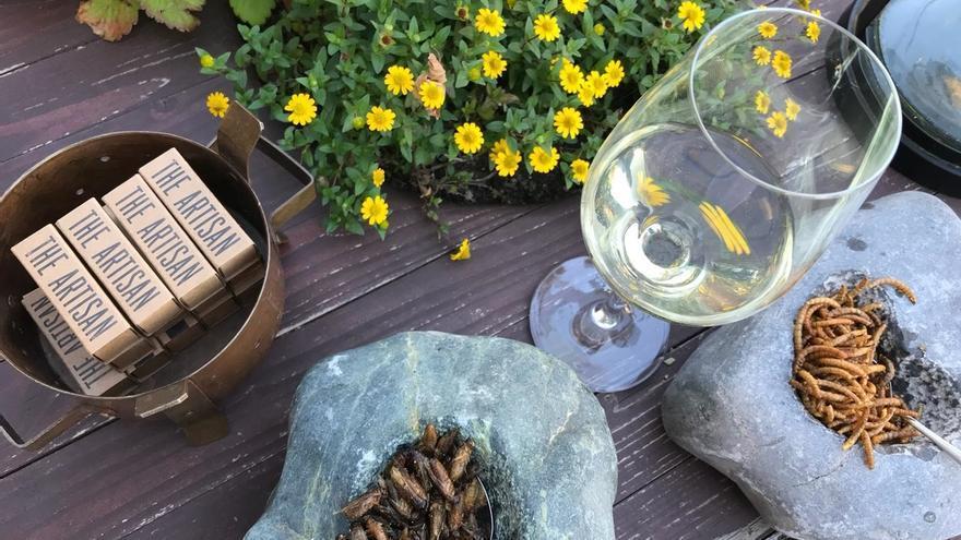La D.O. Rueda, pionera en realizar catas con degustación de insectos