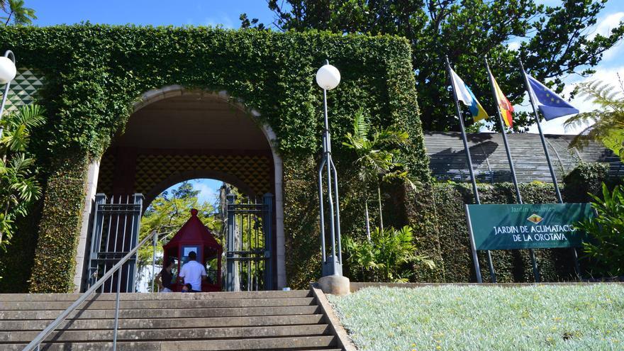 Un paseo por el bot nico for Informacion sobre el jardin botanico