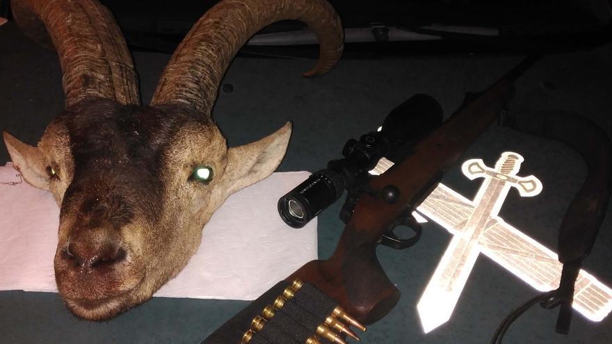 Intervenida una cabeza de macho montés recién abatida por cazadores furtivos en Tabernas
