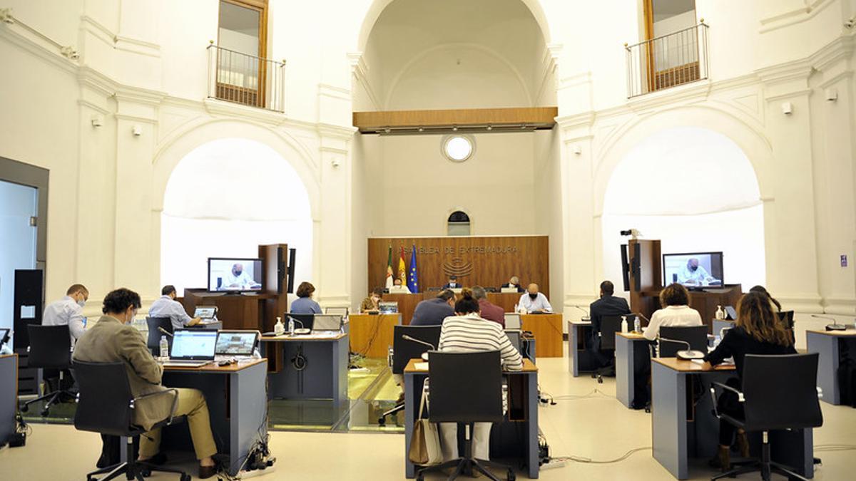 Celebración de la comisión de Agricultura en la Asamblea de Extremadura
