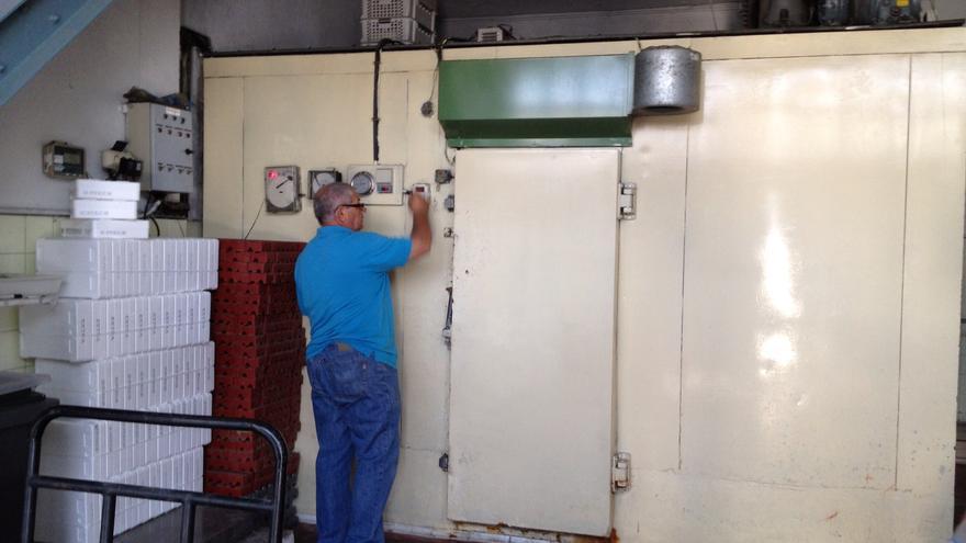 Una cámara frigorífica para mariscos en el Puerto de Huelva.