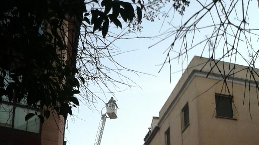 Los bomberos intervienen en el incendio   PLATAFORMA MARAVILLAS