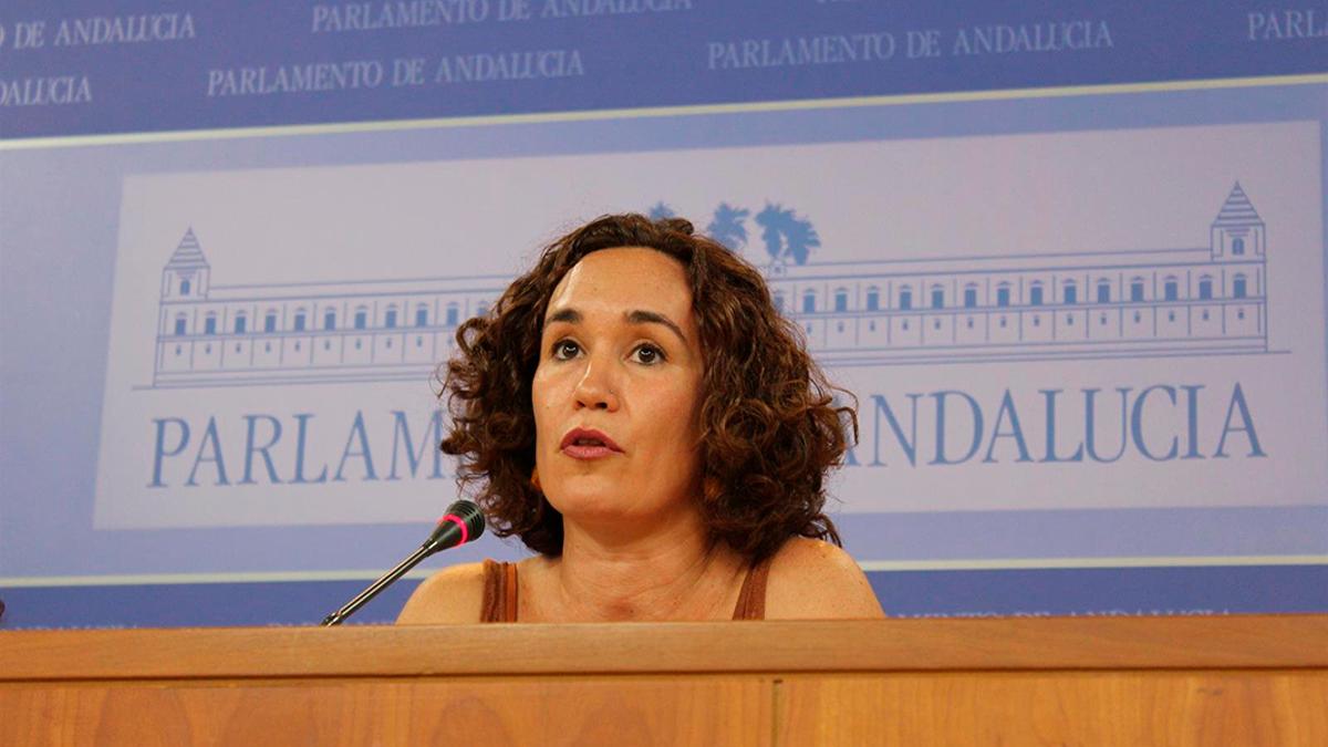 La parlamentaria de Unidas Podemos por Andalucía, Ana Naranjo.