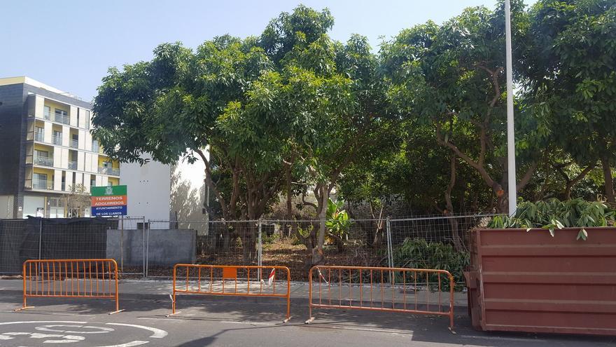 El primer parque para perros de Los Llanos de Aridane se está construyendo al inicio de la calle Pedro Miguel. Foto: Ayuntamiento de Los Llanos.