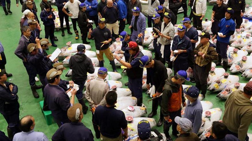 La nueva lonja de pescado de Tokio se estrena dos días antes de abrir al público