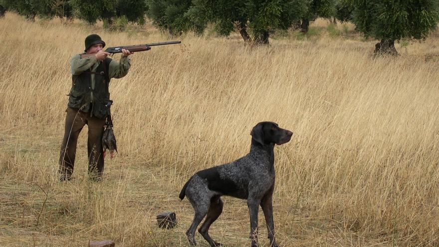 Desarrollo Sostenible publica las fechas de las convocatorias para obtener licencias de caza