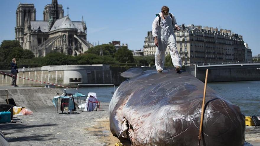 """Un """"cachalote"""" encalla en París para denunciar el cambio climático"""